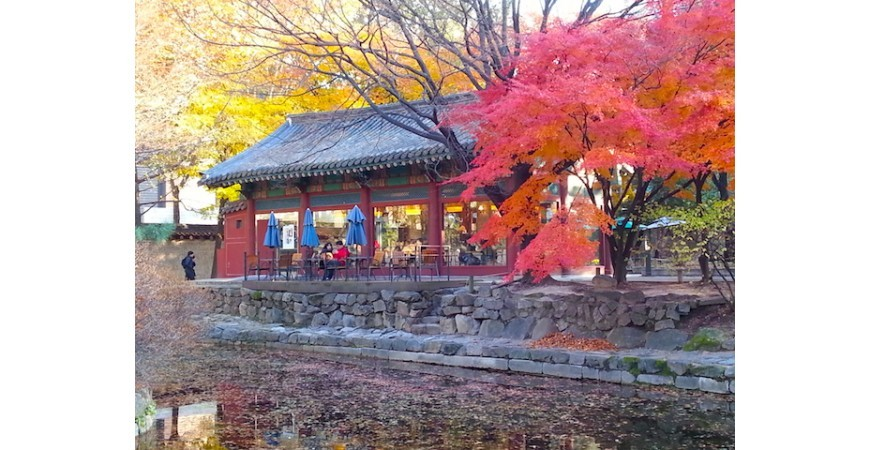 Fall Colours at Deoksugung